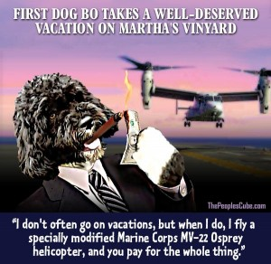 Obama_Bo_Dog_Vacation