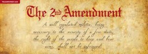2nd Aemendment